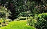 VG_500_9135_on1_landscape.jpg
