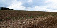 VG_500_2584_on1_landscape.jpg