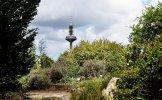 VG_850_4073_on1_landscape.jpg