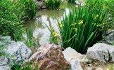 DSC_5842_on1_landscape.jpg